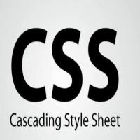 Wapkiz Code] See Complete WapArnab TK CSS Code Finally
